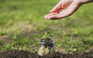 Mécénat d'entreprise - Des pièces de monnaie dans un pot de verre et une petite plante qui pousse dessus